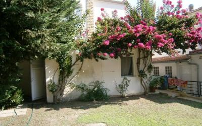 Maisonette in Paliouri - located in a beautiful environment and close distance to the sea