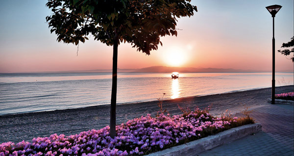 polychrono-sunrise-beach-promenade-flowers