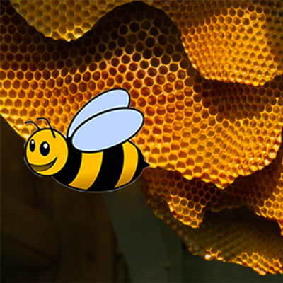 halkidiki beekeeping workshop 400x400